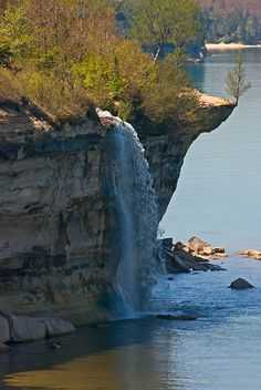 I love Michigan!  Spray Falls, Picture Rocks National Lakeshore Park.  The tree, you go/grow. ;)  The cold water beach in the background.