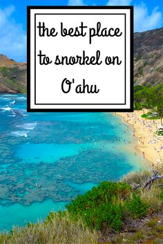 If you read the guides, listen to the locals, or take notice of all the coupons in the weekly free publications that are found all over O'ahu, then you will quickly come to the conclusion if you want to go snorkelling on O'ahu, Hanauma Bay is THE place to snorkel here.