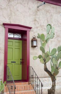 Cactus and Doorway by Elvira Butler