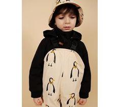 Rainy penguin