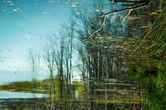 "Saatchi Art Artist Michael Filonow; Photography, ""Reflection 42"" #art"