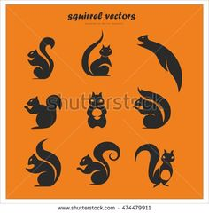 squirrel vectors