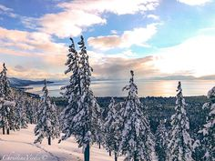 The Lake Tahoe area in all its natural beauty, March 2017 Photo: Christi Virdee