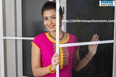Classic Mosquito Net Window fitment in Chennai-http://phifermosquitoscreens.com/