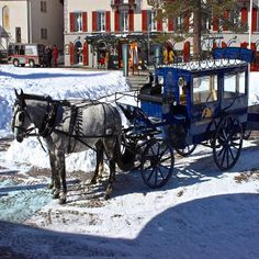 Transportation options in the village of Zermatt.  There is one main road that is a shop-lined walk from the station to the main square but charming to arrive in this horse drawn carriage.  That walk is nice too with lots of Swiss watches Swiss chocolate and lots of great restaurants. by blueskytraveler