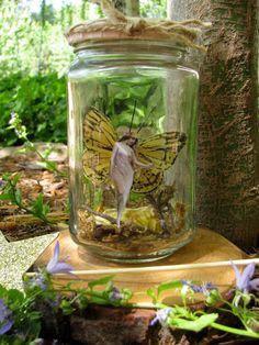Butterfly Fairy in a Jar by wanderingmermaid on Etsy                                                                                                                                                                                 More