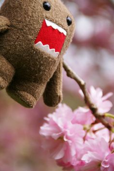 DOMO kun on a tree in spring