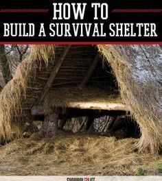 Survival Shelter Tutorial from The California Survival School | DIY Self Sufficiency and Preparedness Skills by Survival Life http://survivallife.com/2015/05/06/survival-shelter-tutorial-from-the-california-survival-school/