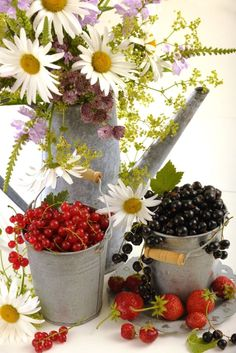 Torbjorn Skogedal - flower_bouquet_and_berries_1108088978l.JPG