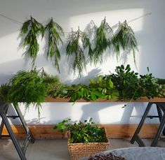 Current Obsessions: Holidays Ahead: Gardenista