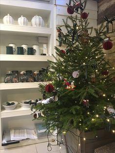 Christmas displays at Daylesford Christmas Displays, Christmas Tree, Daylesford, Holiday Decor, Home Decor, Teal Christmas Tree, Homemade Home Decor, Christmas Poster, Xmas Trees