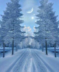 Best Earth Pics on – – Winterbilder Winter Photography, Nature Photography, Photography Trips, Foto Picture, Beautiful Winter Scenes, Beautiful Winter Pictures, Winter Magic, Winter Scenery, Snow Scenes