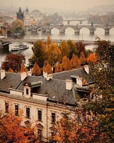 A foggy autumn day in Prague looking south down the River Vltava across the Mánesův Charles Legion and Jirásek bridges. Photo taken from the hi Places To Travel, Places To See, Travel Destinations, Wanderlust Travel, Autumn Inspiration, Travel Inspiration, Travel Ideas, Travel Tips, Beautiful World