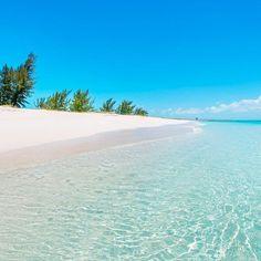 Go on a Caribbean Cruise