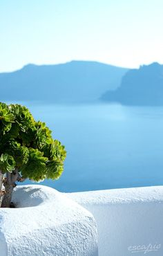 That view! Santorini is almost unbeatable when it comes to breathtaking views. Hotel Kirini Suites & Spa. Santorini. Greece.
