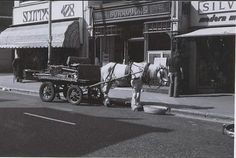 Coldharbour Lane probably the last rag and bone horse and cart left in Brixton 1972 London History, British History, South London, Old London, London Places, Brixton, Rag And Bone, Vintage Photographs, Old Houses