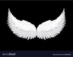White Angel Wings, Photo Booth Props, Great Pictures, Black Backgrounds, Book Art, Vector Free, Black And Grey, Illustration, Creative Ideas