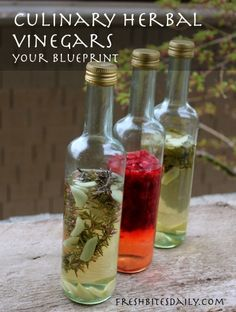 Your new go-to blueprint for homemade herbal culinary vinegars – Fresh Bites Daily Flavored Oils, Infused Oils, Herbal Oil, Herbal Extracts, Fermented Foods, Canning Recipes, Apple Cider Vinegar, Pesto, Herbalism
