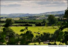even though i want to live in california one day, i would love to have a house in the country side of Ireland.