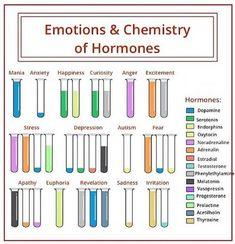The hormones in the different emotions. - The hormones in the different emotions. Stress And Depression, Mental And Emotional Health, Mental Health Education, Mental Health Nursing, Dental Health, Physical Education, Psychology Facts, Health Psychology, Behavioral Psychology