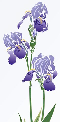 Beautiful Iris flower stencil. 2 sheet designer stencil Iris Stencil 1 is a beautiful and elegant Iris Stencil based on Henny's detailed Bearded Iris drawings. This beautiful flower stencil is ideal for modern floral and botanical home decorating.  Great for panels, furniture, soft furnishings and more. Easy to use stencil in two layers with shapely petals and detailed stamens and flower vein markings. See size specifications below.
