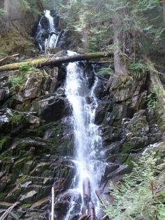 Hike to Ranger Falls in Mt. Rainier National Park.