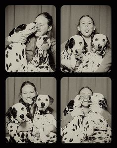 Photographer Lynn Terry had an amazing artistic idea: she put two dogs in a photo booth so as to capture some amazing moments. But she could never expect how sw