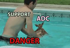 the support/adc relationship YOU IDIOT STAY OUT OF THERE .  Sometimes all too true XD