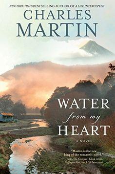 Water from My Heart: A Novel by Charles Martin https://smile.amazon.com/dp/B00NERQRXK/ref=cm_sw_r_pi_dp_U_x_i-KtBbWZWMJDJ