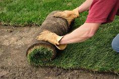 Laying Sod: Shortcut to a Beautiful Lawn
