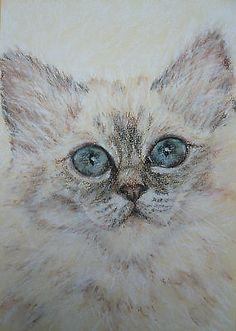 ORIGINAL PASTEL PAINTING 'Cat' by Susan Rimmer