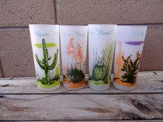 Vintage Blakely Oil And Gas, 4 Frosted Glasses, Arizona Cactus, Tumbler, Ice Tea, Beer Glasses, Southwestern Cactus Glassware