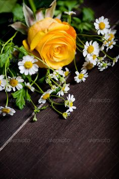 Realistic Graphic DOWNLOAD (.ai, .psd) :: http://sourcecodes.pro/pinterest-itmid-1007001437i.html ... bunch of spring flowers ...  Ranunculus, arrangement, beautiful, blossom, bouquet, bunch, color, flowers, freshness, gerbera, gift, mums, nature, objects, rose, spring, table  ... Realistic Photo Graphic Print Obejct Business Web Elements Illustration Design Templates ... DOWNLOAD :: http://sourcecodes.pro/pinterest-itmid-1007001437i.html