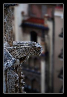 0508 gargolas catedral sevilla