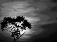 Lights and shadows by nancydev on YouPic Light And Shadow, Shadows, Clouds, Celestial, Lights, Sunset, Black And White, Abstract, Outdoor