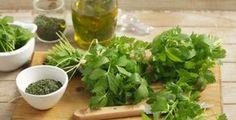 Libeček obvykle končí jen v polévce, což je škoda Herbal Remedies, Natural Remedies, Health And Wellness, Health Fitness, Dieta Detox, Salsa Verde, Fish Dishes, Korn, Medicinal Plants