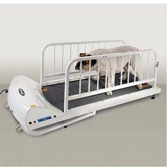 GoPet PetRun PR720E Dog Treadmill PR720E. Want it? Own it? Add it to your profile on unioncy.com #gadgets #tech #electronics