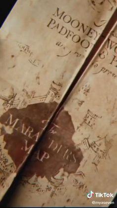 Harry Potter Draco Malfoy, Harry Potter Tumblr, Harry Potter Pictures, Harry Potter Cast, Harry Potter Fan Art, Severus Snape, Harry Potter Fandom, Harry Potter Characters, Harry Potter World
