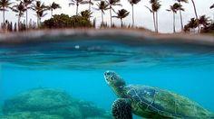 ISLAND HOPPING IN HAWAII  OAHU MAUI KAUAI BIG ISLAND MOLOKAI LANAI