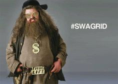 Hagrid.  Bahahaha, I love Hagrid!  I think he's my favorite on the Harry Potter series :)