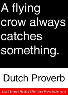 A flying crow always catches something. - Dutch Proverb #proverbs #quotes