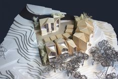 NAAS Springs – FFA Proposal / Hapsitus Architects