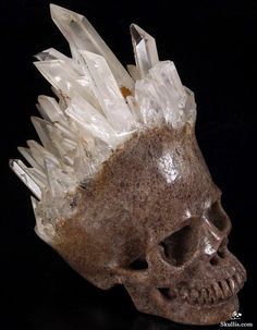Quartz Rock Crystal Crystal Skull - This company produces some amazing skull sculptures! Some are VERY pricey, but you can find some on Ebay for under $50.