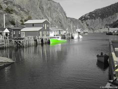 Black, White and Green - NL Scenery