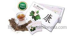 k-muricata obat kanker herbal kmuricata indonesia