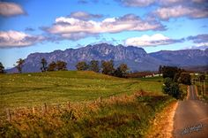 Counting Sheep? Another view of Mt Roland, plus the road to Wilmot.  #tasmania   #wilmot   #gimp   #rawtherapee   #canon   #linux   #debian   #gnu   #hdr