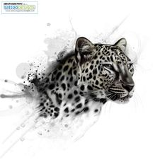 """""""Jaguar tattoo for my hip"""" this is not a jaguar.its like a combination of a cheetah and a leopard.this is like getting a chinese symbol but not knowing the correct meaning. Leopard Tattoos, Snow Leopard Tattoo, Animal Tattoos, Jaguar Tattoo, Aquarell Tattoos, Kunst Tattoos, Big Cat Tattoo, Tattoo Art, Head Tattoos"""