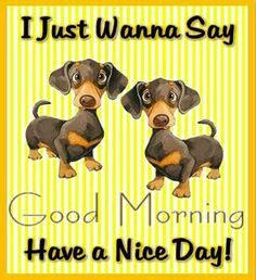 I Just Wanna Say Good Morning Have A Nice Day morning good morning morning quotes good morning quotes morning quote good morning quote cute good morning quotes Good Morning Puppy, Cute Good Morning Quotes, Good Day Quotes, Morning Inspirational Quotes, Good Morning Gif, Good Morning Picture, Good Morning Messages, Good Morning Wishes, Good Morning Images