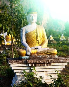 """Introduction to Buddharupa Buddharupa means """"Form of the Awakened One,"""" and is used in Buddhism as a term for statues and models of Buddha. While descriptions of Buddha's appearance vary between traditions, there are some common features seen throughout most Buddharupa."""
