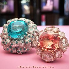 Two beautiful gems, an exotic 8.64ct Padparadscha cushion nestled in a bouquet of white diamond ovals with a pink diamond accent. A vibrant 15.41ct Paraiba Tourmaline cushion with petals of white diamond and Paraiba brilliants.